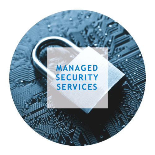 Managed Security Solutions Services in Okhla, Phase 2, Delhi