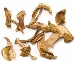 Dried Oyster Mushroom-1 kg