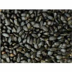 Organic Tukmaria, Packaging Type: PP Bag, Packaging Size: 25 Kg