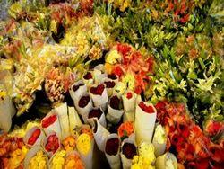 Floral Decorators Service