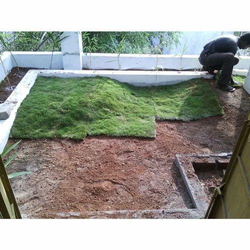 terrace garden services in coimbatore