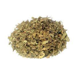 Java (Cat Whisker) Orthosipan Aristatus Tea