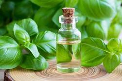 Natural Basil Essential Oil