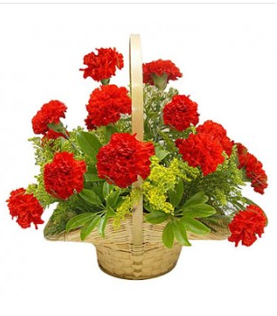 12 Red Carnation Basket At Rs 799 Piece Carnation Flowers Ms
