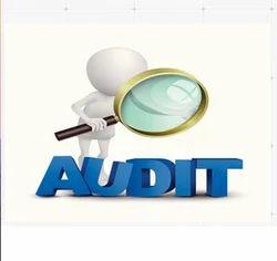 Statutory Audit Of Companies