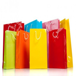 Garment Paper Bag