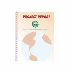 Ceramic Industry Project Report Consultancy