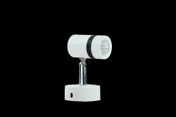 DL-135 WL Surface Wall Light