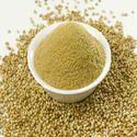 Indian Dhaniya Powder