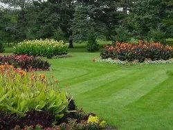Grass Parks Or Gardening Garden Landscaping Services, PAN India, Coverage Area: 1000 to 3000 Square Feet