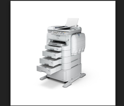 Epson WorkForce Pro WF-R5691 Printer