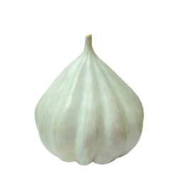 Garlic - An Learning Model