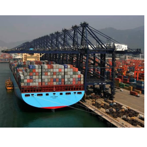 Sea Freight Service - Sea Air Freight Services Service Provider from