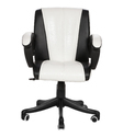 Workstation Chair Black and White (The Blanegro Lb)