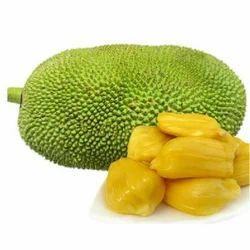 Jackfruit Cold Storage Rental Services