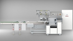 Logipac 22 S Automatic Flow Wrap Machine