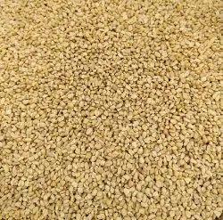 50 Kg Methi Dana, Packaging Type: Packet