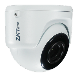 2MP Low Light IR Eyeball Network Camera