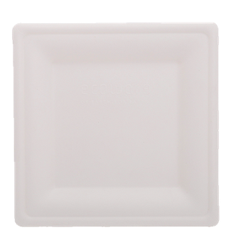 8 Inch Square Plate