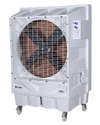 Raj Jumbo Air Cooler