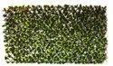 Rectangular Artificial Vertical Garden
