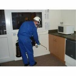 Wood Borer Control Services, In Hyderabad