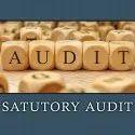 Statutory Financial Audit Services