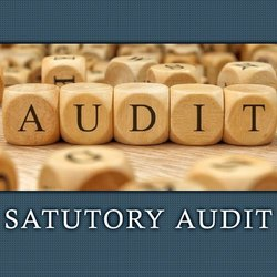 Consulting Firm Statutory Financial Audit Services, Jaipur