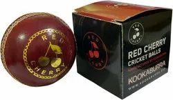Cricket Ball Boxes
