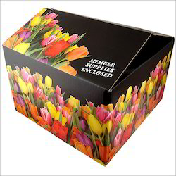 Multi Colour Carton