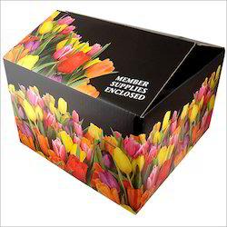 Multi Colour Carton