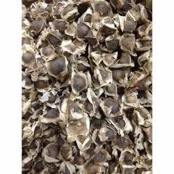 Chi Chum Ngay Moringowate Moringa Seed