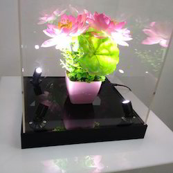 Acrylic Flower Showcase