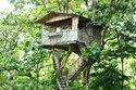Tree House Cost Mumbai