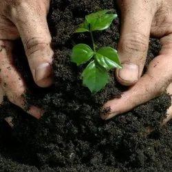 Black Organic Bio Fertilizer, Bio-Tech Grade, Packaging Type: 50 Kg