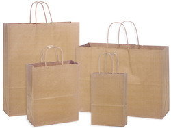 Paper Handle Grocery Bag
