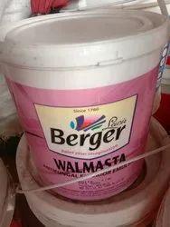 Berger Antifungal Paint