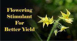 Flowering Stimulant