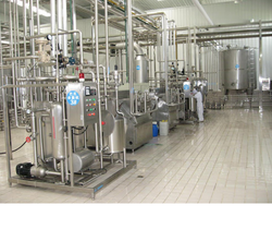 Automatic Stainless Steel 304 Mango Processing Plant, Processing Capacity : 1~20 t/h