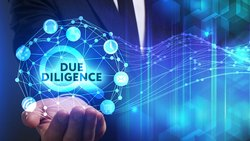 Due Diligence Service