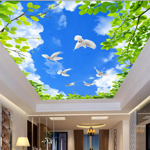 sky-ceiling-500x500 Best Mobile Home Roof Coating on best mobile home skirting, best mobile home roof tile, best mobile home doors, best mobile home paint, best paint for tile roof, best roof for mobile home, best mobile home roofer, best mobile home decks, best mobile home porches,