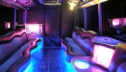 Party Busses Services