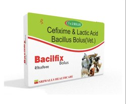 Cefixime & Lactic Acid Bacillus Bolus (Vet)
