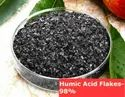 Humic Acid Liquid Fortified With Vitamins