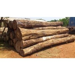 Brown Round Cherry Wood Log