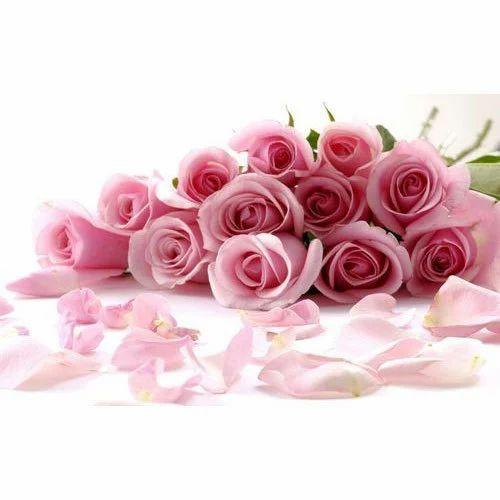 Floral, Printed Modern 3D Pink Rose Wallpaper
