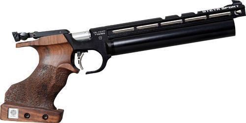 Steyr Evo Air Gun