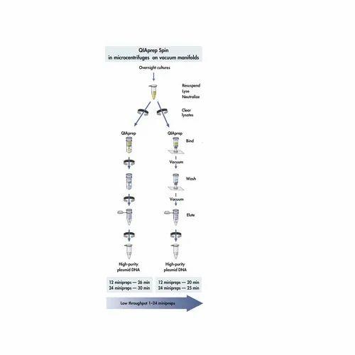 Qiagen Dneasy Powerlyzer Powersoil Kit Dna Kit Dna Purification Kit Genomic Dna Extraction Kit ड एनए एक सट र क शन क ट ड एनए न ष कर षण क ट Qiagen India Pvt Ltd Delhi Id 21933241597