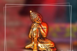 Seazell Overseas Brass SI-02 Statues and Idols, Packaging Type: Box