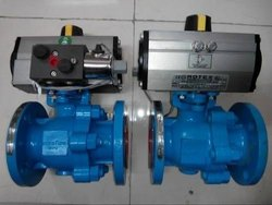 Rotex Actuated Ball Valve
